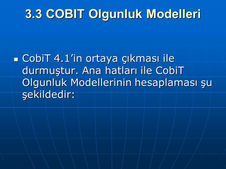 3.3 COBIT Olgunluk Modelleri