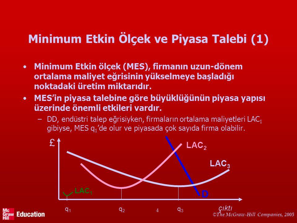 Minimum Etkin Ölçek ve Piyasa Talebi (2)