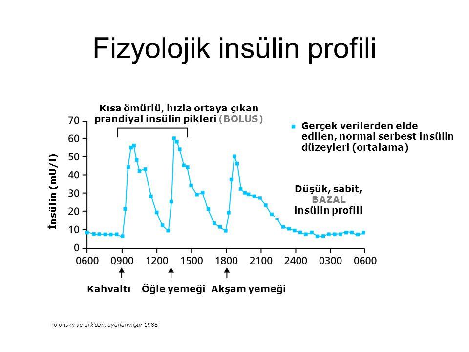 Fizyolojik insülin profili