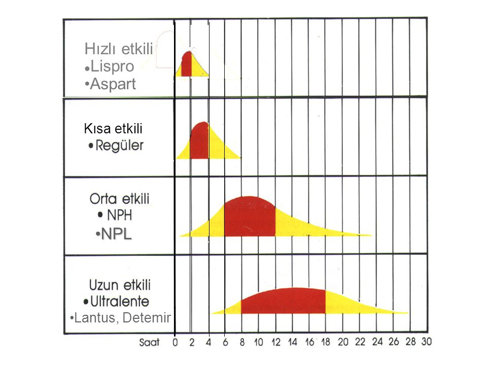 Hızlı etkili Lispro Aspart Kısa etkili NPL Lantus, Detemir