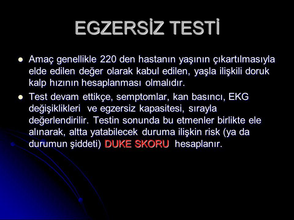 EGZERSİZ TESTİ