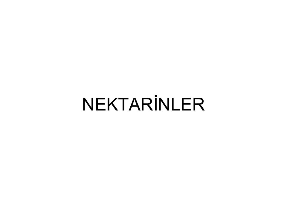 NEKTARİNLER