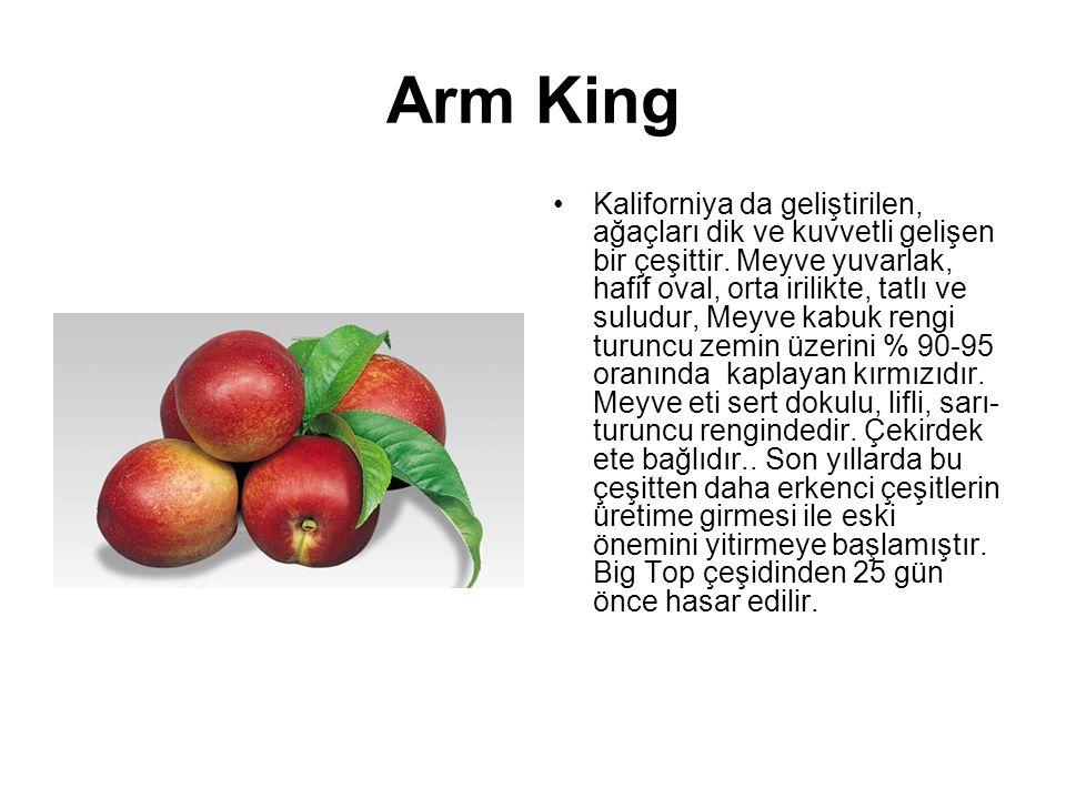 Arm King