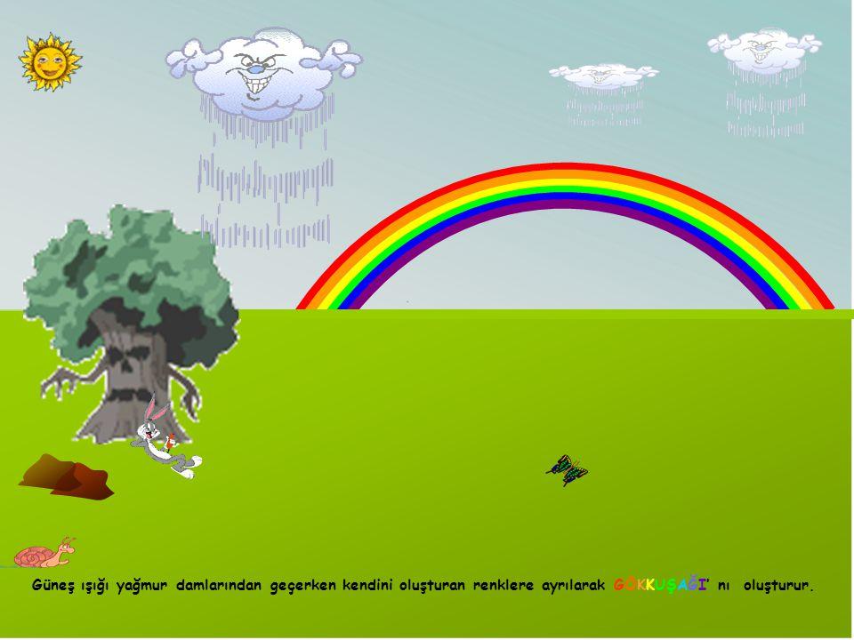 Güneş ışığı yağmur damlarından geçerken kendini oluşturan renklere ayrılarak GÖKKUŞAĞI' nı oluşturur.