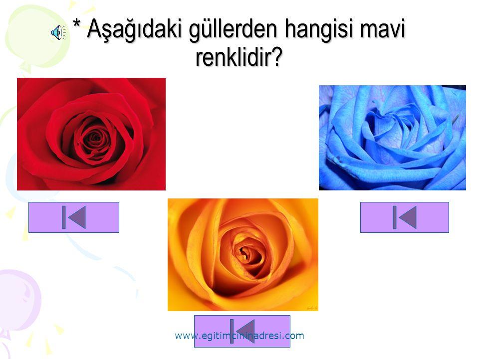* Aşağıdaki güllerden hangisi mavi renklidir