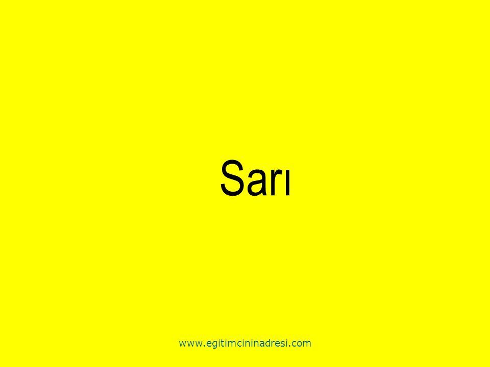 Sarı www.egitimcininadresi.com