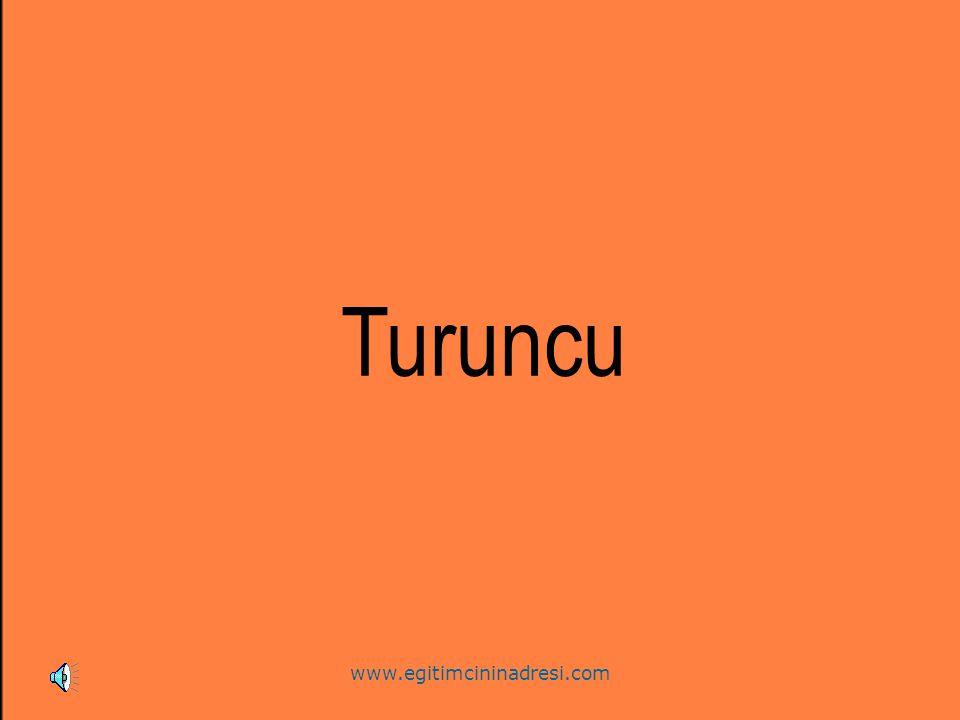 Turuncu www.egitimcininadresi.com