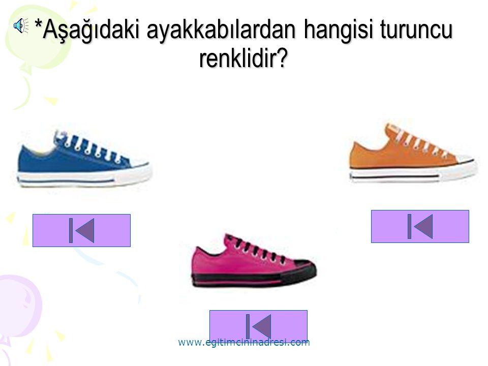 *Aşağıdaki ayakkabılardan hangisi turuncu renklidir
