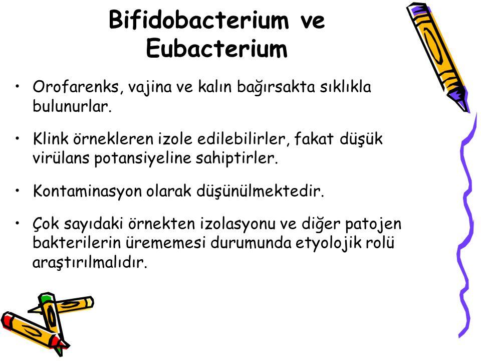 Bifidobacterium ve Eubacterium