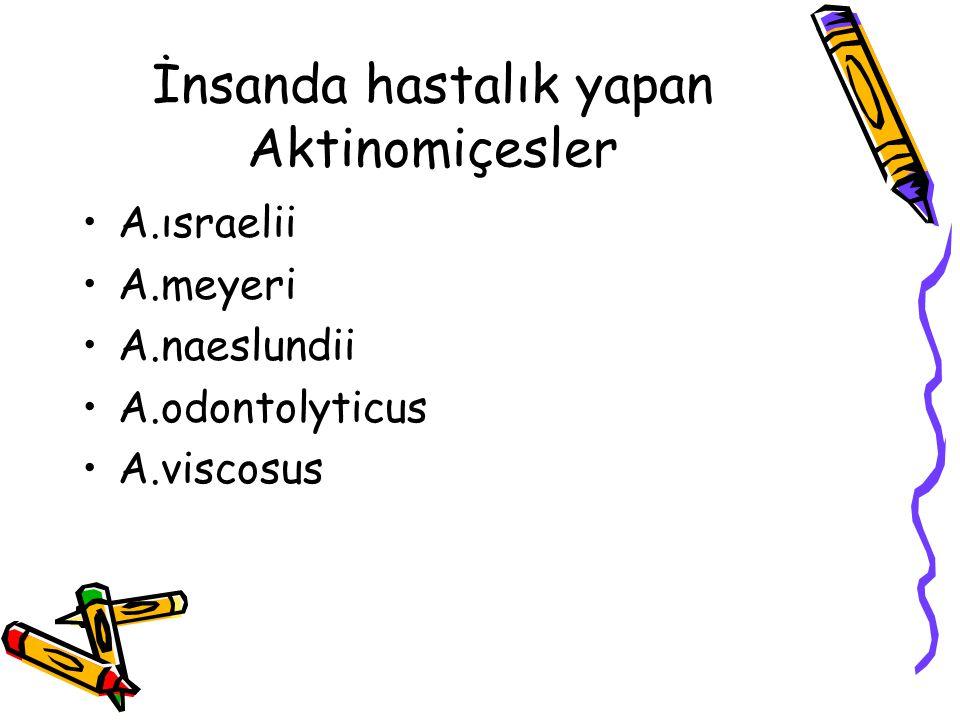 İnsanda hastalık yapan Aktinomiçesler