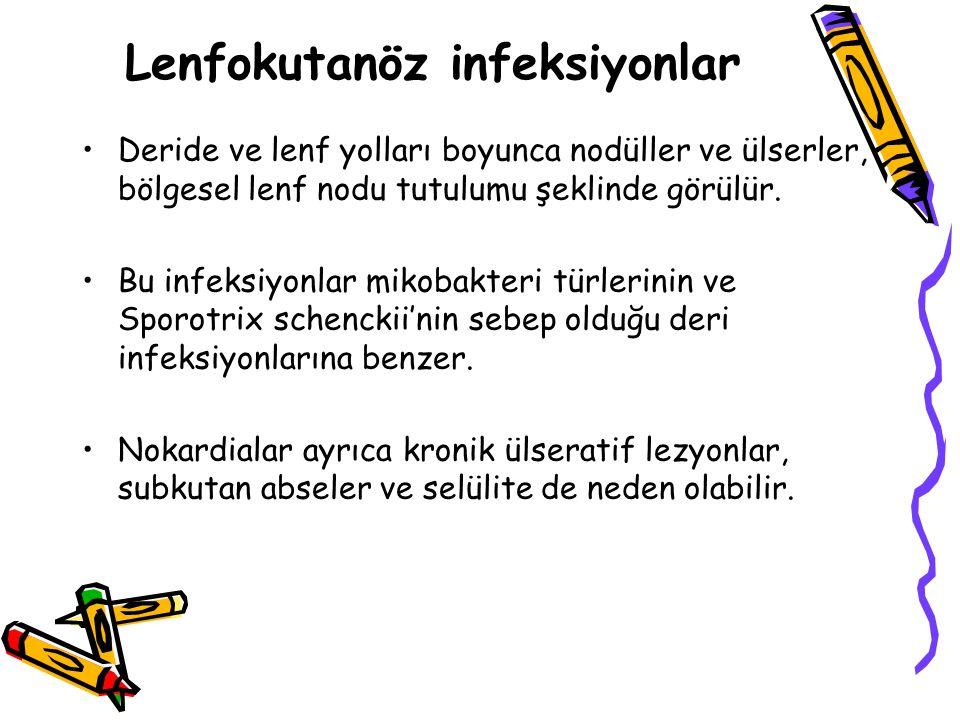 Lenfokutanöz infeksiyonlar