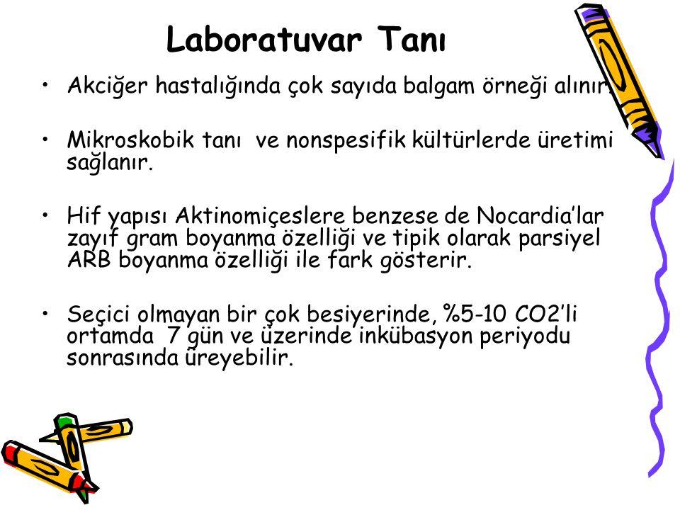 Laboratuvar Tanı Akciğer hastalığında çok sayıda balgam örneği alınır.