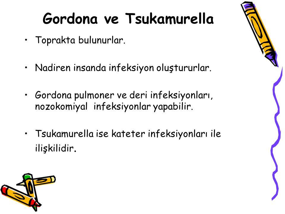 Gordona ve Tsukamurella