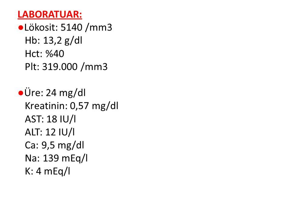LABORATUAR: ●Lökosit: 5140 /mm3 Hb: 13,2 g/dl Hct: %40 Plt: 319