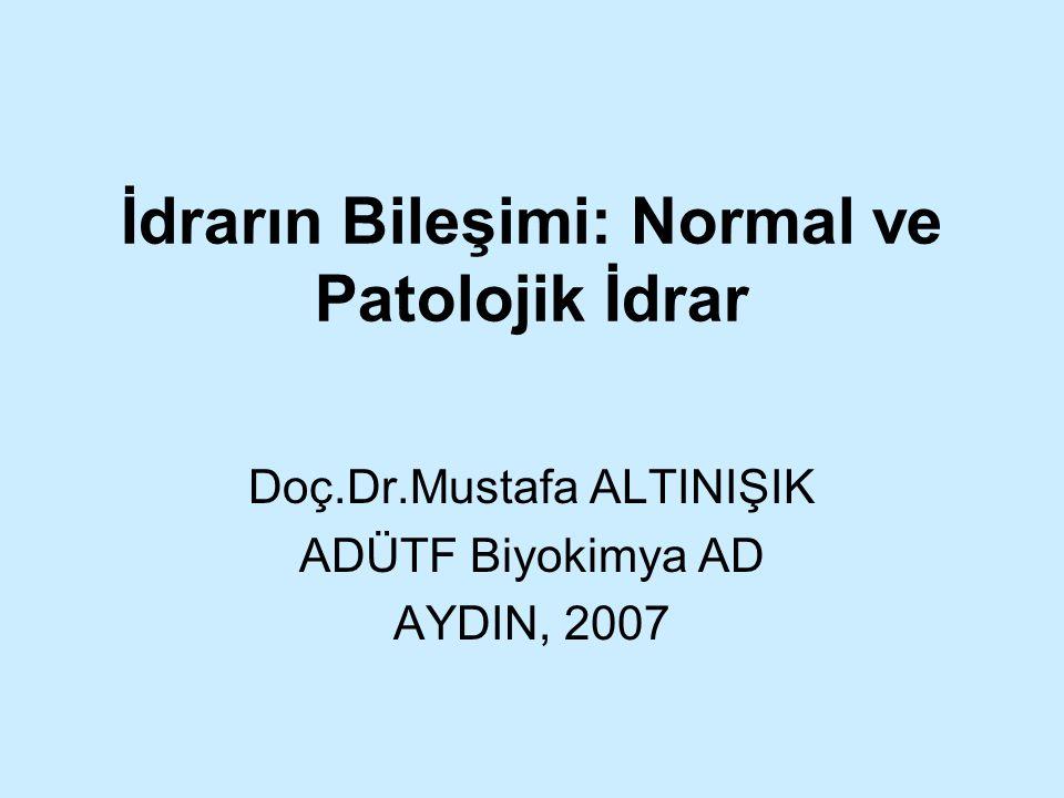 İdrarın Bileşimi: Normal ve Patolojik İdrar