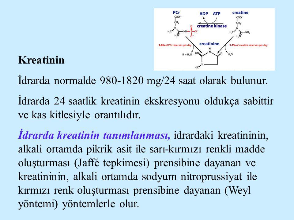 Kreatinin İdrarda normalde 980-1820 mg/24 saat olarak bulunur.