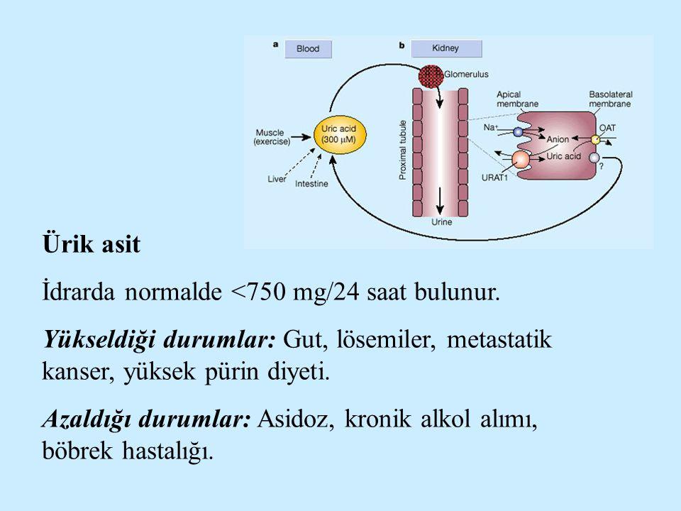 Ürik asit İdrarda normalde <750 mg/24 saat bulunur. Yükseldiği durumlar: Gut, lösemiler, metastatik kanser, yüksek pürin diyeti.