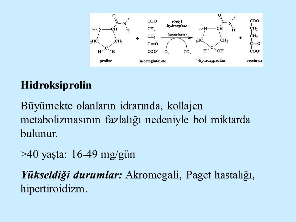 Hidroksiprolin Büyümekte olanların idrarında, kollajen metabolizmasının fazlalığı nedeniyle bol miktarda bulunur.