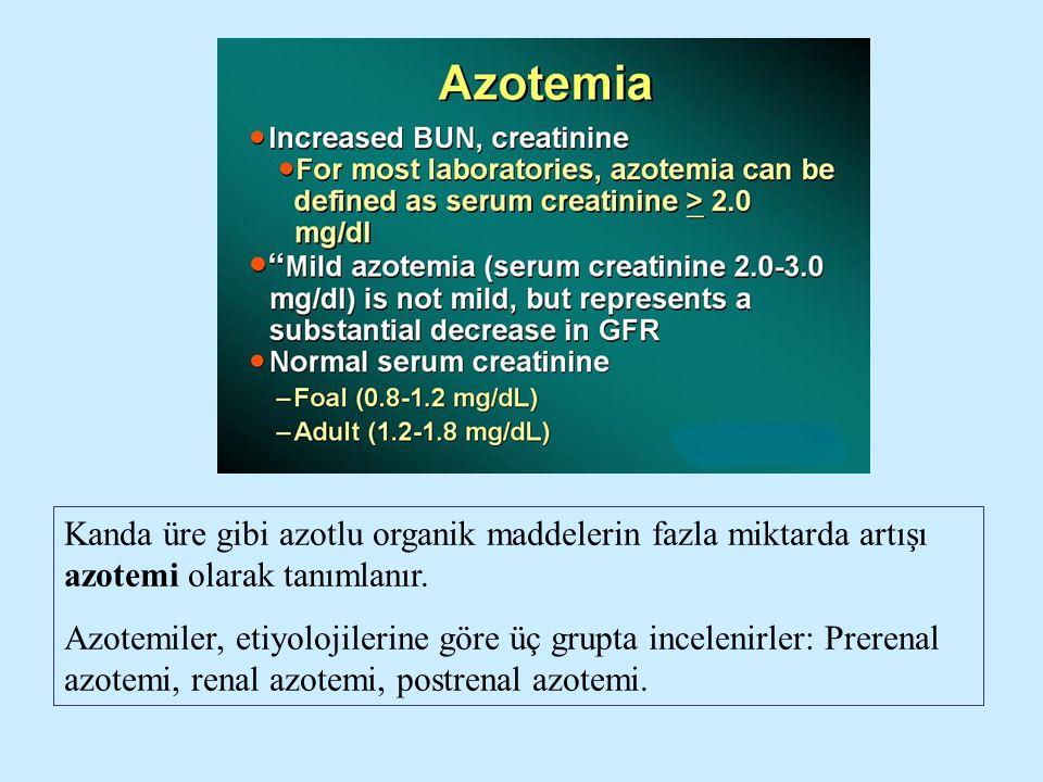 Kanda üre gibi azotlu organik maddelerin fazla miktarda artışı azotemi olarak tanımlanır.