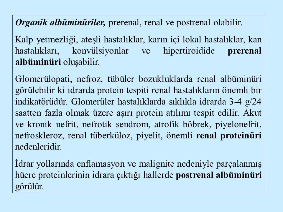 Organik albüminüriler, prerenal, renal ve postrenal olabilir.