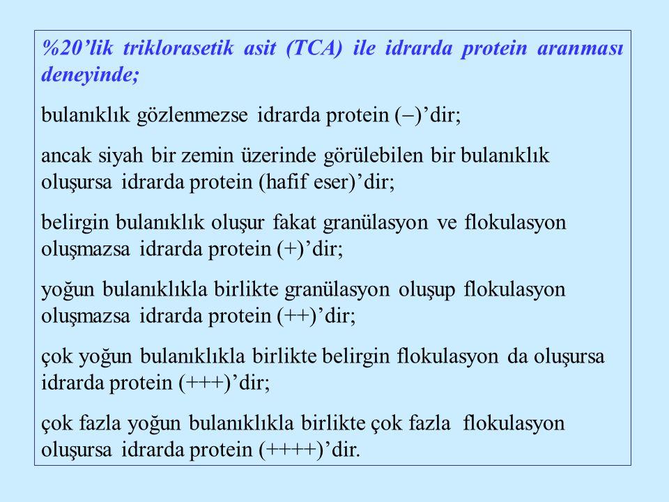 %20'lik triklorasetik asit (TCA) ile idrarda protein aranması deneyinde;