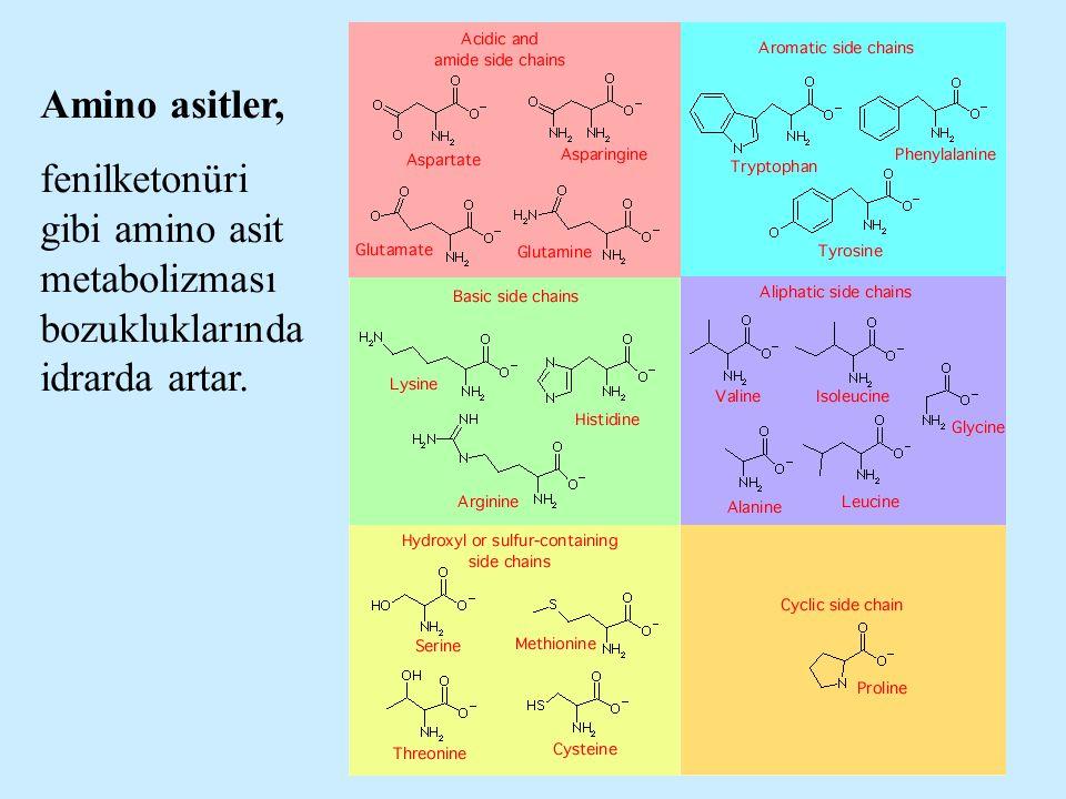 Amino asitler, fenilketonüri gibi amino asit metabolizması bozukluklarında idrarda artar.
