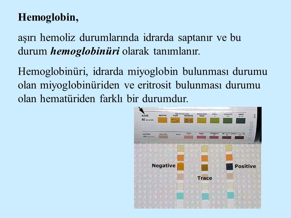 Hemoglobin, aşırı hemoliz durumlarında idrarda saptanır ve bu durum hemoglobinüri olarak tanımlanır.