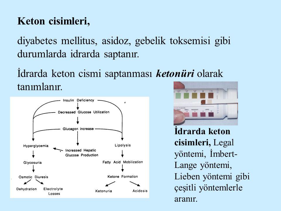 İdrarda keton cismi saptanması ketonüri olarak tanımlanır.