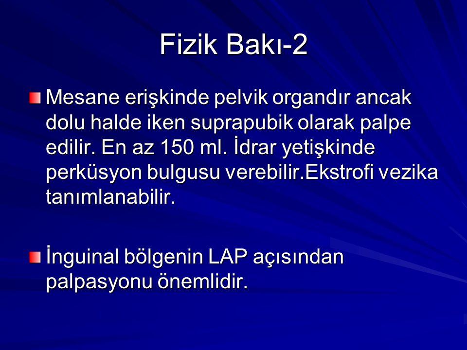 Fizik Bakı-2