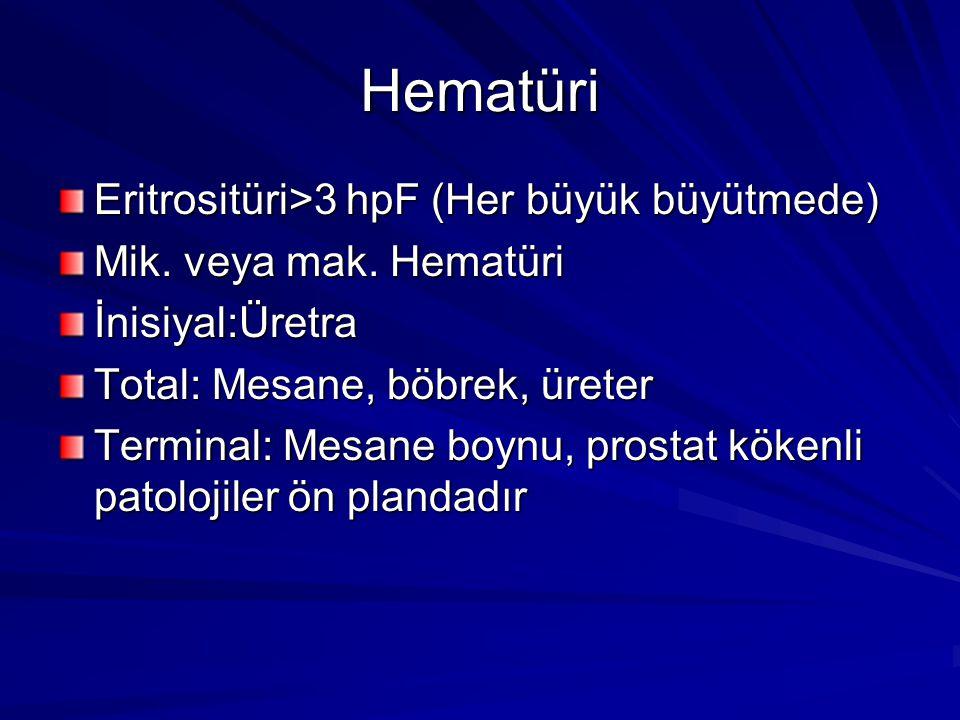 Hematüri Eritrositüri>3 hpF (Her büyük büyütmede)
