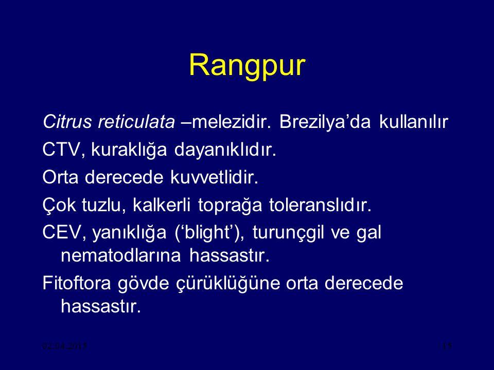 Rangpur Citrus reticulata –melezidir. Brezilya'da kullanılır
