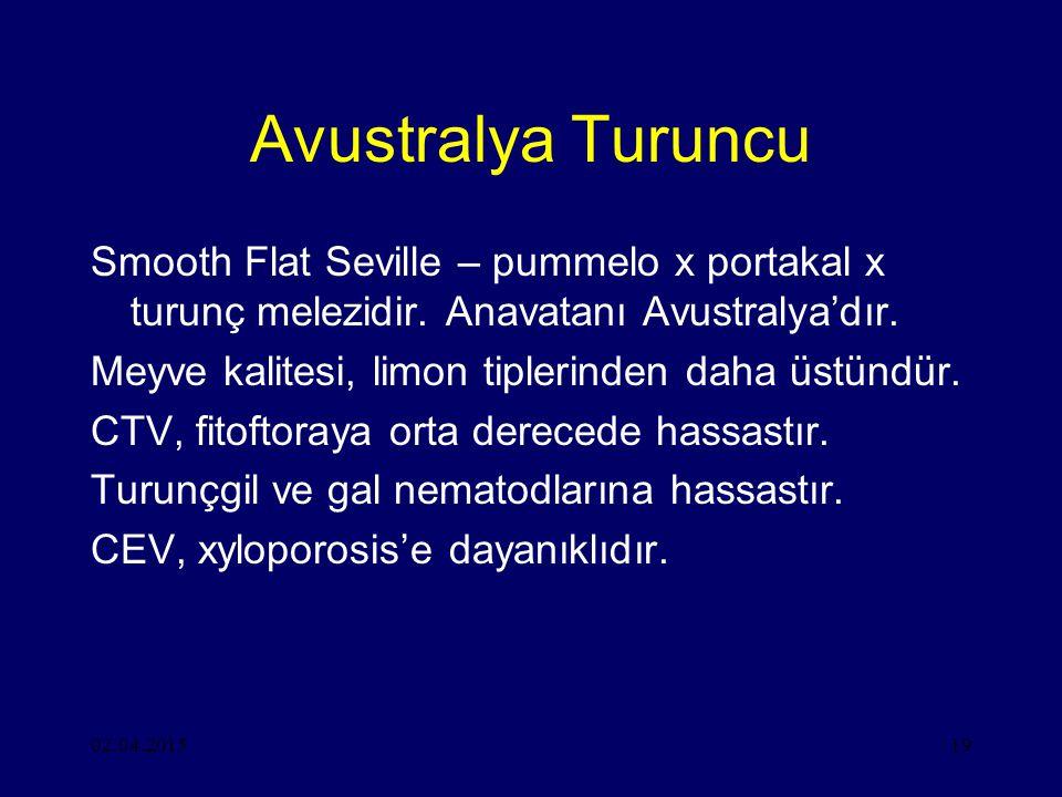 Avustralya Turuncu Smooth Flat Seville – pummelo x portakal x turunç melezidir. Anavatanı Avustralya'dır.