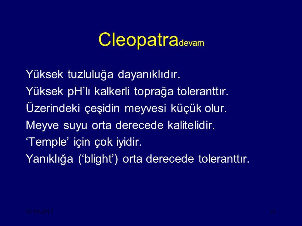 Cleopatradevam Yüksek tuzluluğa dayanıklıdır.