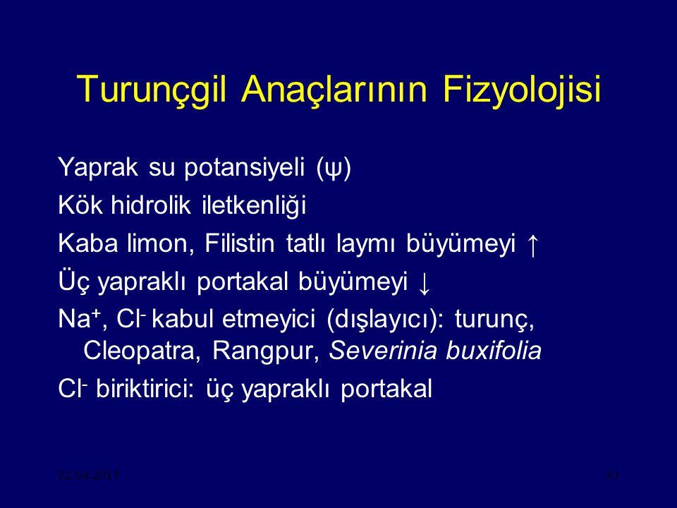 Turunçgil Anaçlarının Fizyolojisi
