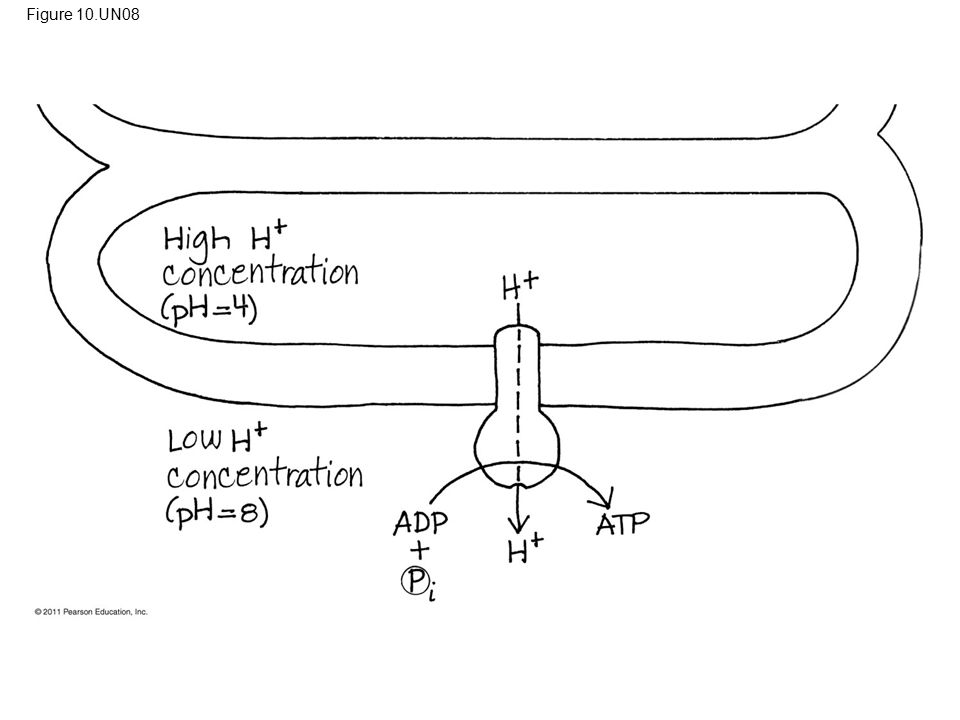 Figure 10.UN08 Figure 10.UN08 Appendix A: answer to Test Your Understanding, question 9 68