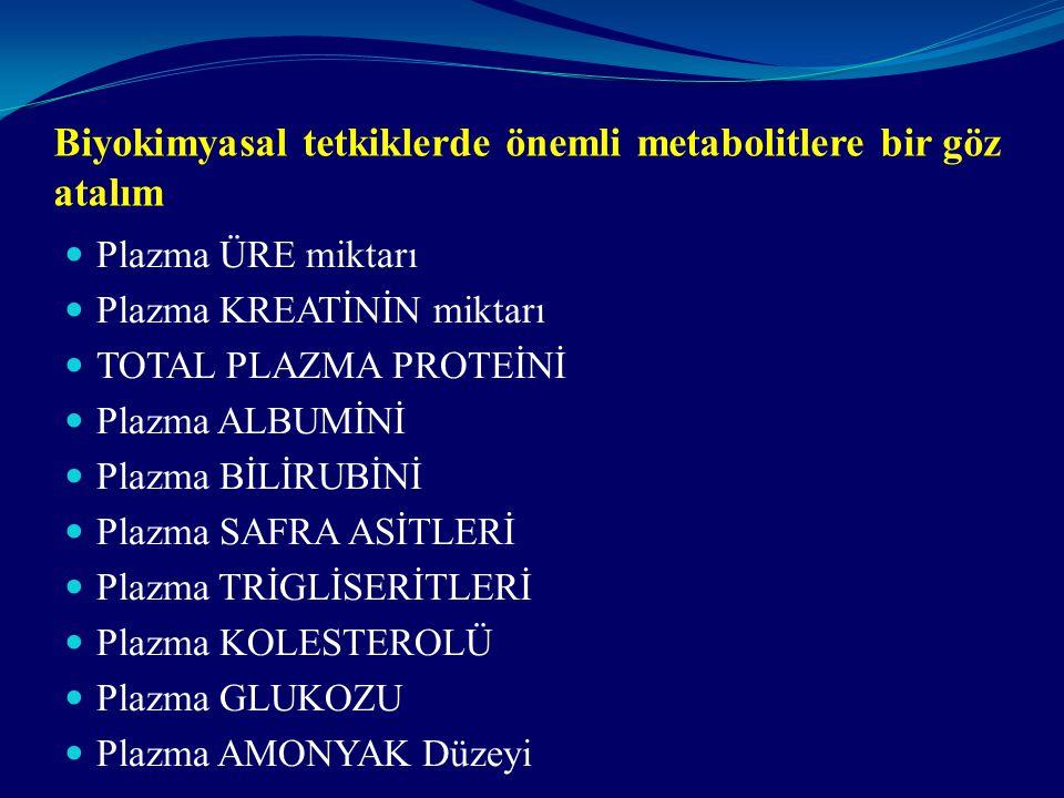 Biyokimyasal tetkiklerde önemli metabolitlere bir göz atalım
