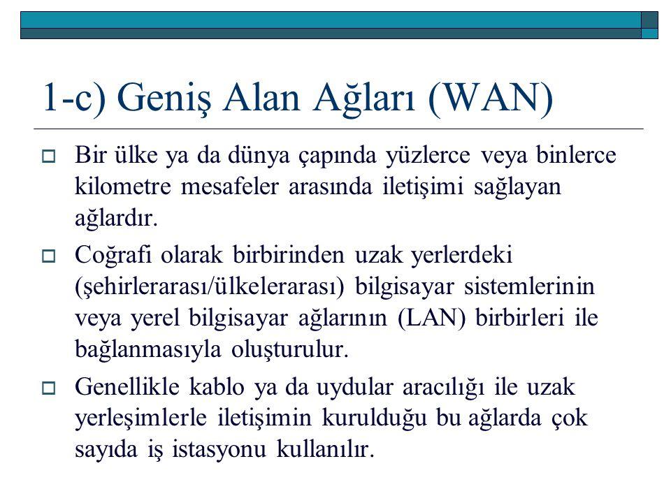 1-c) Geniş Alan Ağları (WAN)