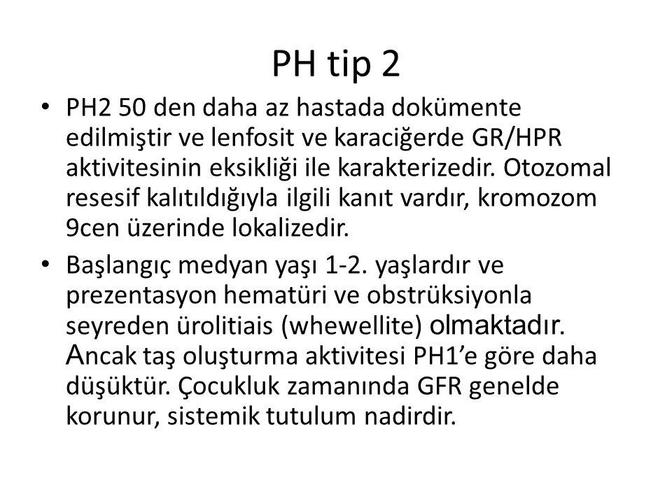 PH tip 2