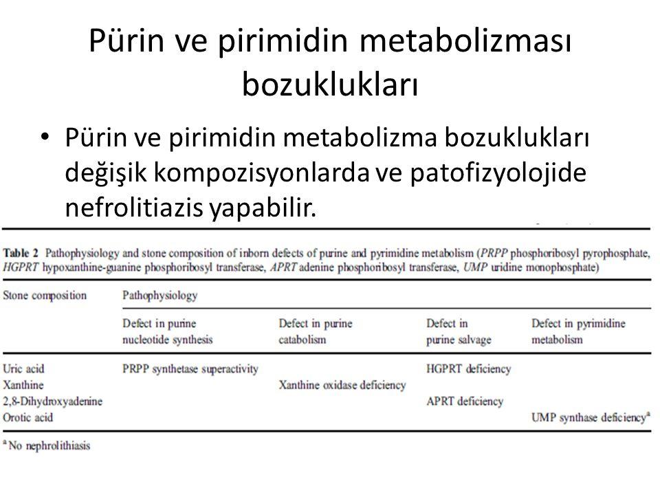 Pürin ve pirimidin metabolizması bozuklukları