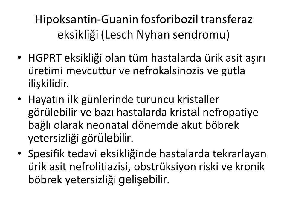 Hipoksantin-Guanin fosforibozil transferaz eksikliği (Lesch Nyhan sendromu)