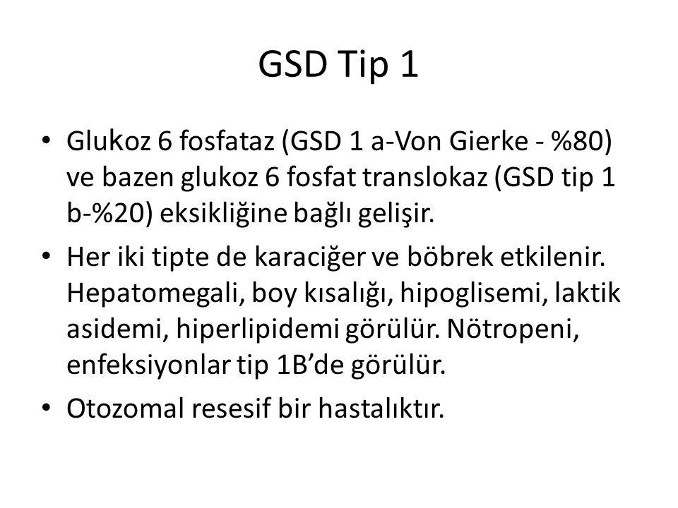 GSD Tip 1 Glukoz 6 fosfataz (GSD 1 a-Von Gierke - %80) ve bazen glukoz 6 fosfat translokaz (GSD tip 1 b-%20) eksikliğine bağlı gelişir.