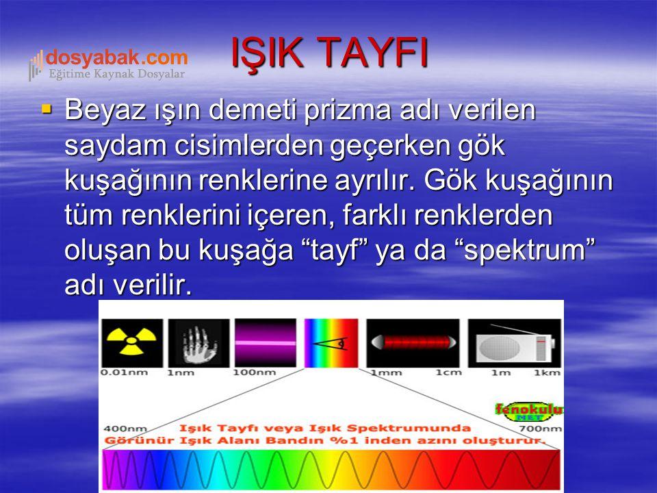 IŞIK TAYFI