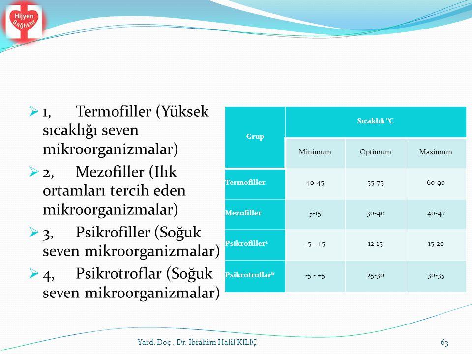 1, Termofiller (Yüksek sıcaklığı seven mikroorganizmalar)