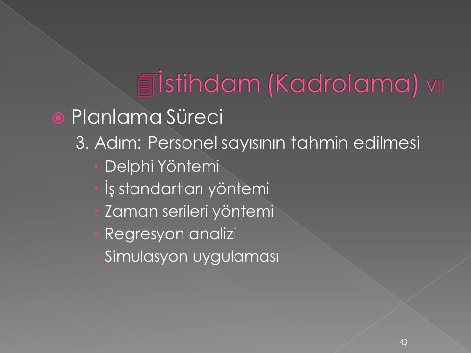 İstihdam (Kadrolama) VII