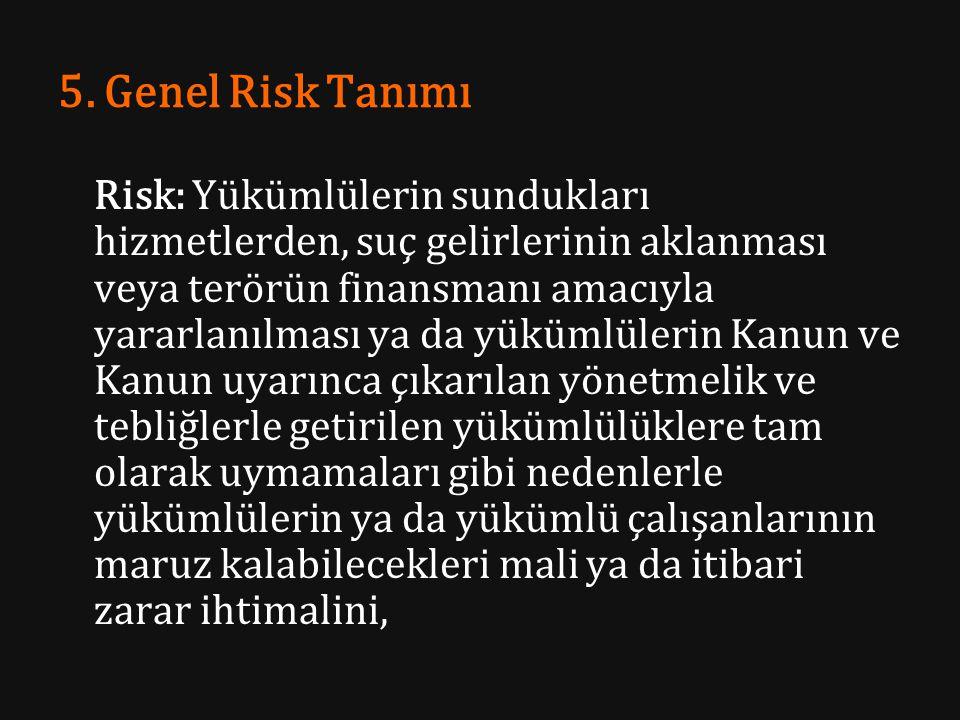 5. Genel Risk Tanımı