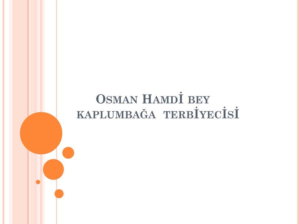 Osman Hamdİ bey kaplumbağa terbİyecİsİ