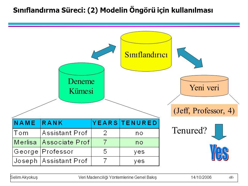 Sınıflandırma Süreci: (2) Modelin Öngörü için kullanılması