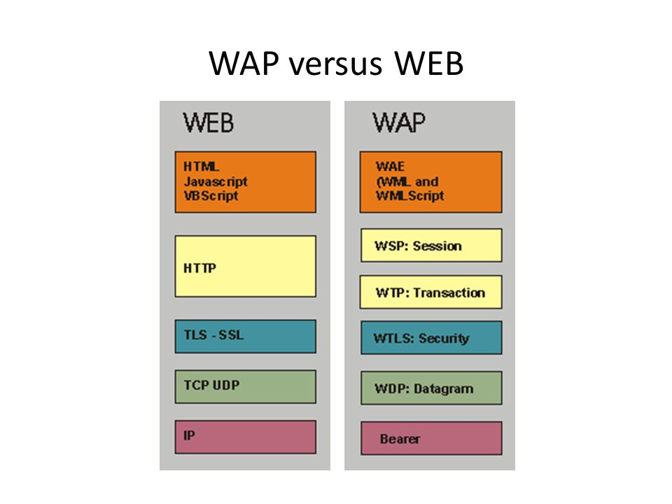 WAP versus WEB