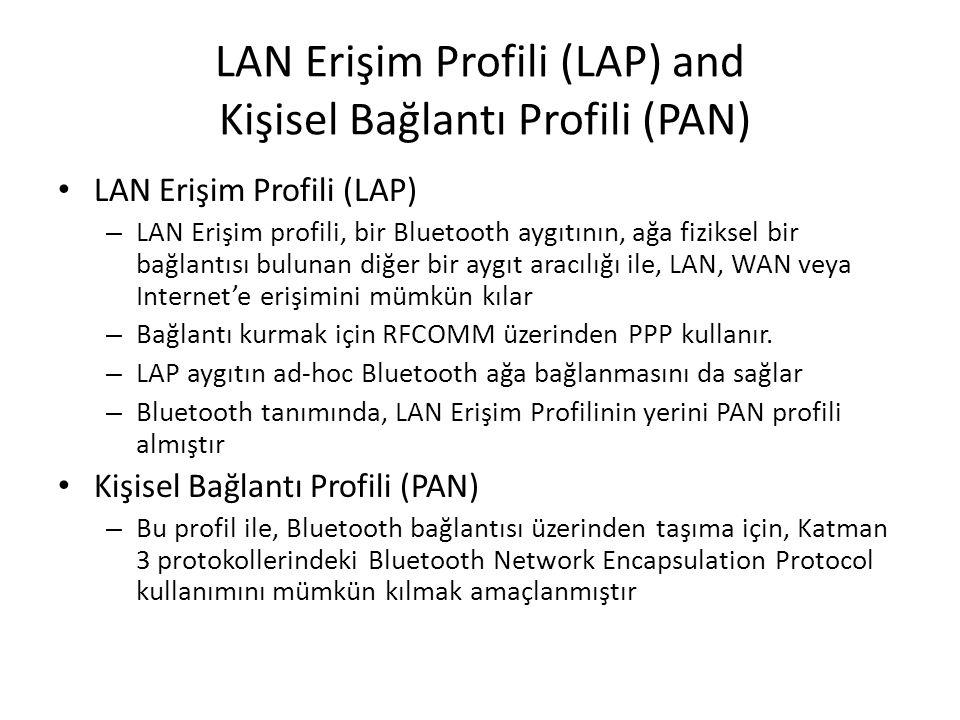 LAN Erişim Profili (LAP) and Kişisel Bağlantı Profili (PAN)