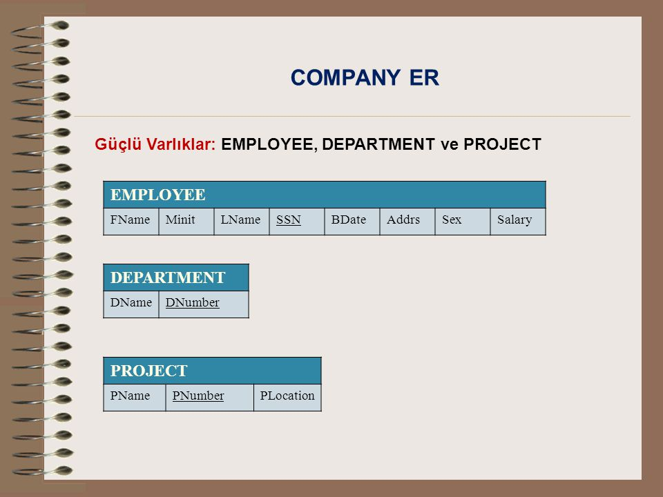 COMPANY ER EMPLOYEE Güçlü Varlıklar: EMPLOYEE, DEPARTMENT ve PROJECT